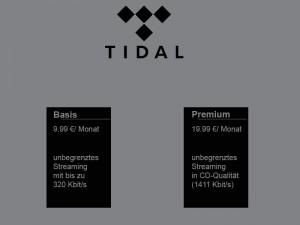 Kostenübersicht Tidal